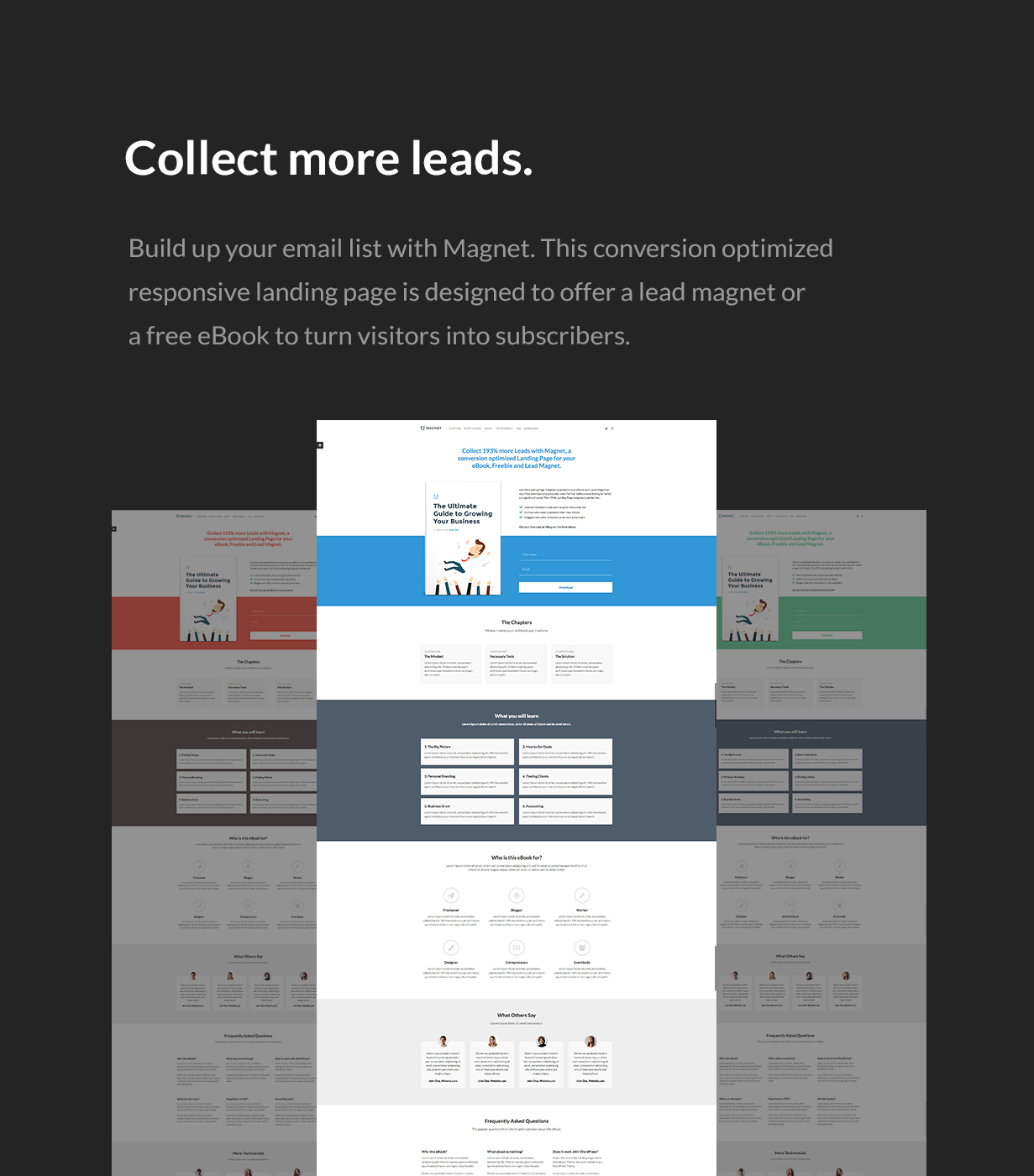 Lead Magnet Landing Page